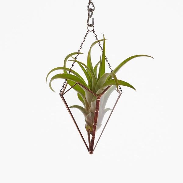 Free-Hanging Stained Glass Air Plant Holder