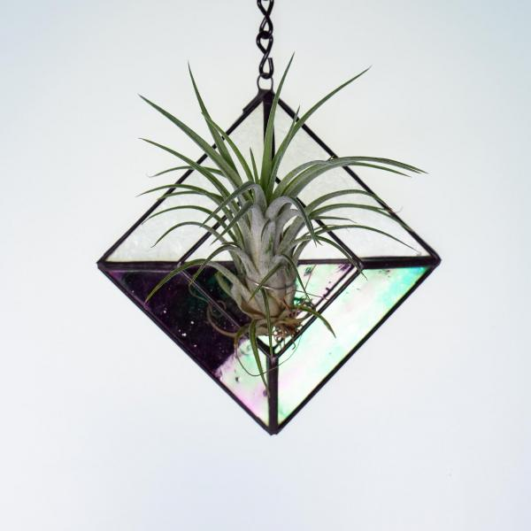 Diamond Hanging Stained Glass Air Plant Holder - Iridescent Black