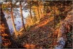 "LAKESIDE TRAIL - gallery-wrapped canvas •  8"" x 12"" • $40 / 16"" x 24"" • $120"
