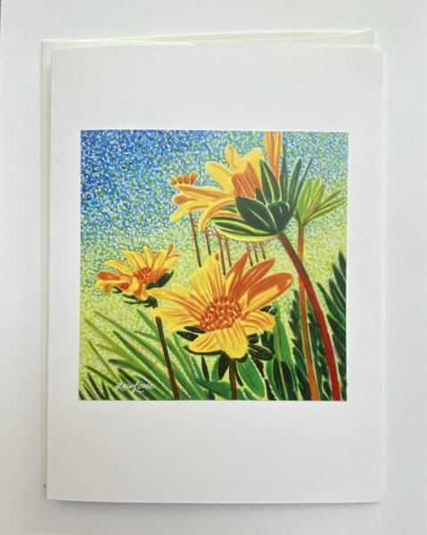 "Blank Notecards ""Whooly Sunflower"""