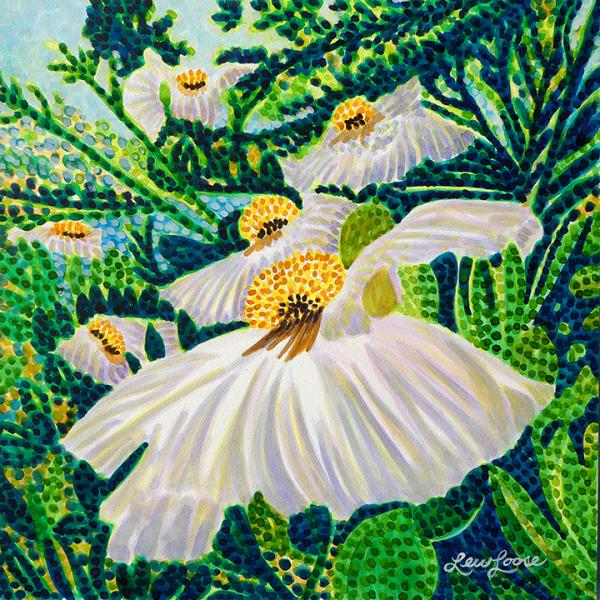 "Watercolor Canvas Gallery Wrap Print - 8""x8"" - ""Matilija Poppy"""