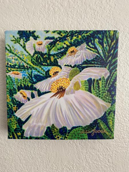 "Watercolor Canvas Gallery Wrap Print - 18""x18"" - Matilija Poppy"""