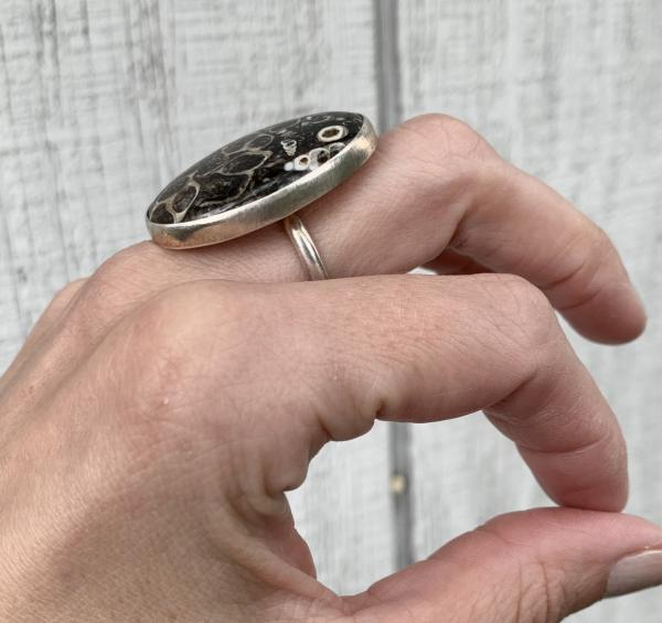 Rare Large Oval Turritella Agate Sterling Silver Statement Ring | Fossil Ring picture