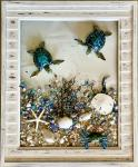 Turtles in Shutters frames