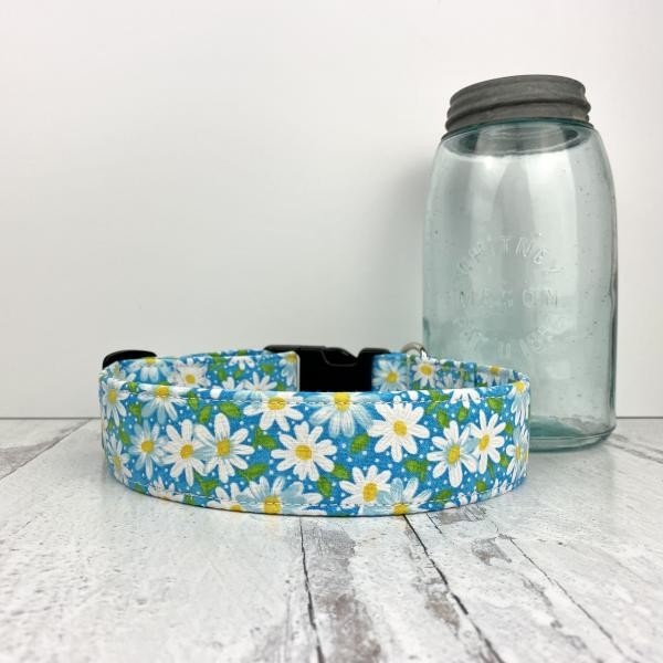 Large Dog Collar picture