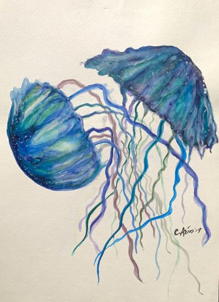 Jellies (original)