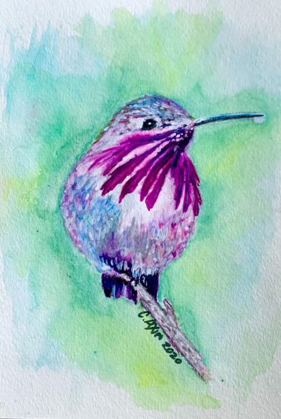 Hummingbird (original watercolor)