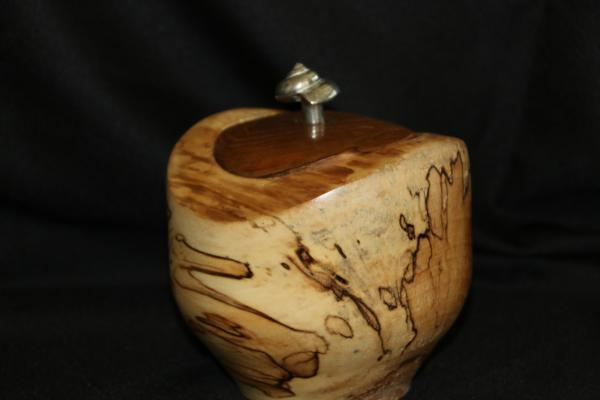 Spalted Birch and Teak Hollow Form