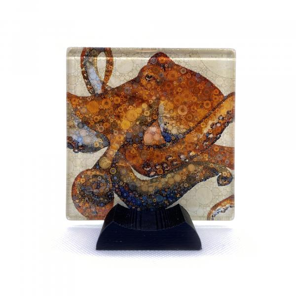 Octopus Coaster (Set of 4)