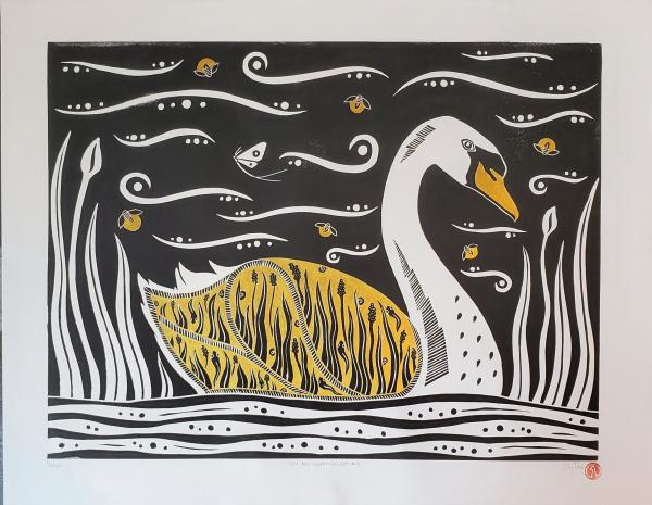 You Are What You Eat #12 - Mute Swan