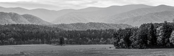 Panorama of Cades Cove in Black and White 8x24