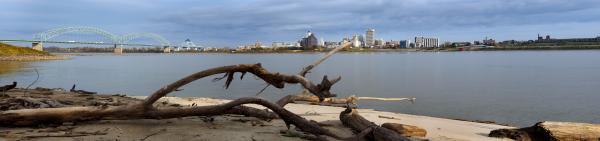 Memphis from Arkansas with Driftwood Color