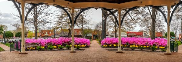 Panorama Collierville Square 10x28