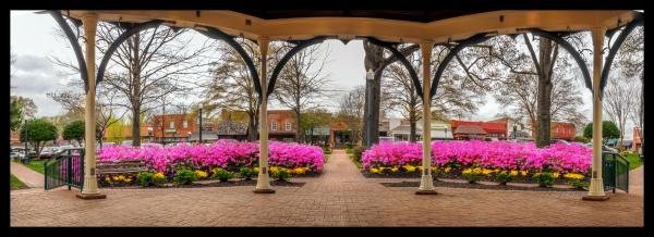 Panorama Collierville Square Framed 11x31
