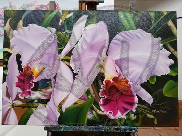 Orchids oil on canvas picture
