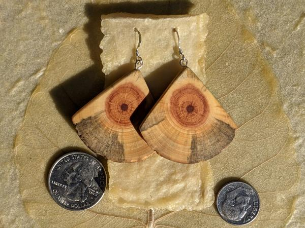 Wooden Moth Wing Earrings picture