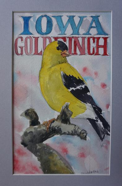 Iowa Goldfinch