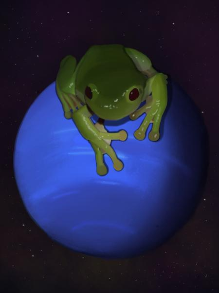 Travel Mug - Neptunian Tree Frog