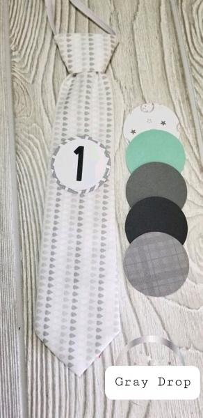 GRAY DROP-MONTHLY MILESTONE TIES PHOTO PROP