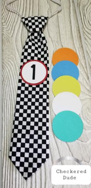 CHECKERED DUDE-MONTHLY MILESTONE TIES PHOTO PROP