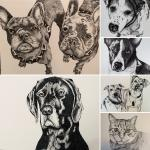 Larger Pet Portraits