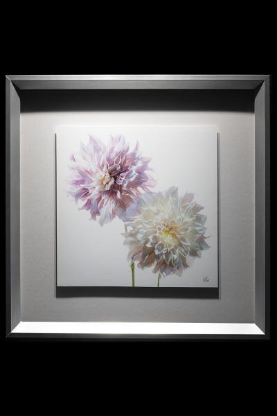 Pink and White Dahlia Framed