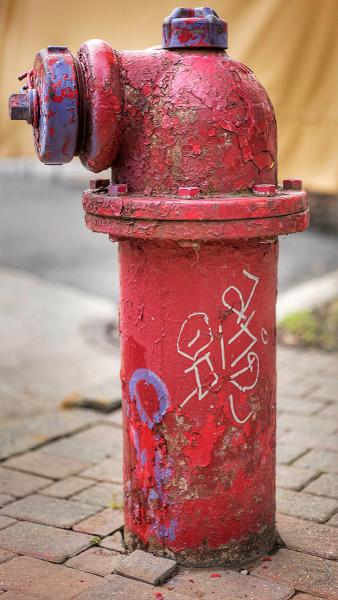 A Colorful Hydrant