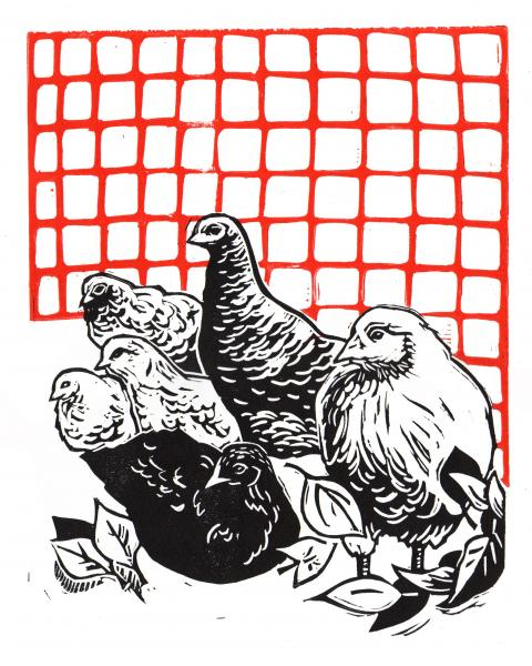 Backyard Chickens Linocut Print picture