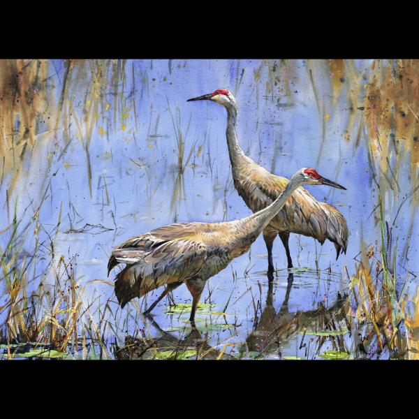 """Sandhills in the Shallows"" picture"