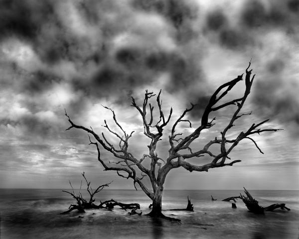 """The Edge of the Continent, Jekyll Island, GA"" 32x40 Framed Presentation"