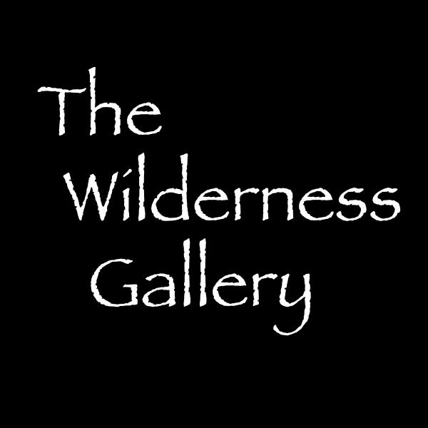 The Wilderness Gallery