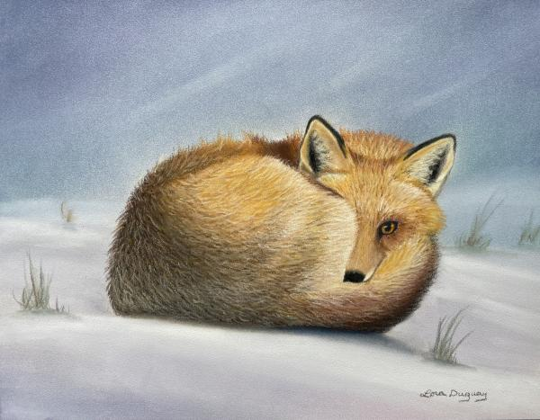 Winter Vixen