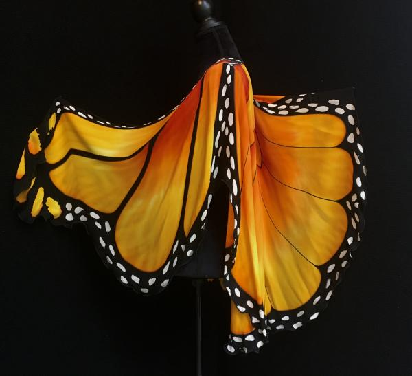 Monarch Butterfly Cape picture