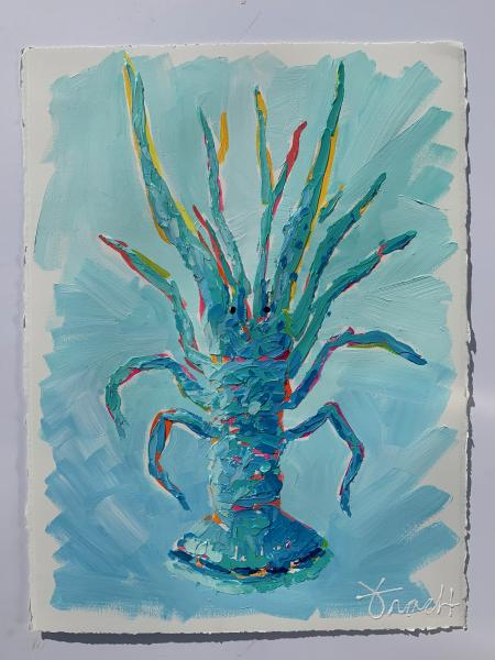 Spiny Lobster Shores 4