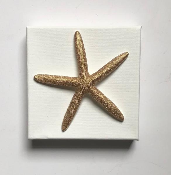 Gold Starfish on Canvas
