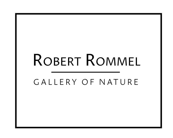 Robert Rommel - Gallery of Nature
