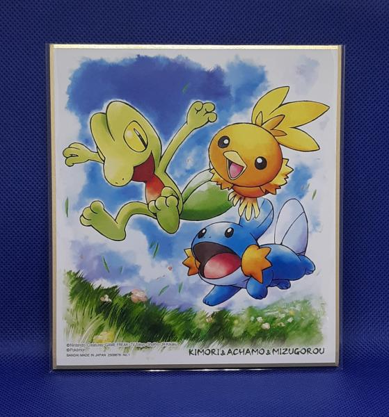 Pokemon Shikishi Art Boards - series 3